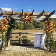 Fall arbor wedding ceremony site